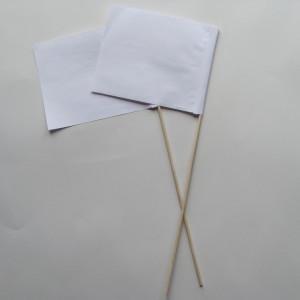 HWflag45