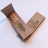 Pickinfo egyedi formájú csomagolás fogpiszkáló, reklám fogpiszkáló